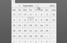 Clean Grey Calendar Interface PSD