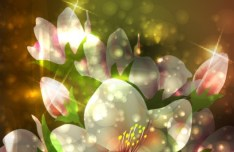 Fantastic Shining Vector Flowers 04