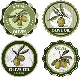 Elegant Vector Olive Oil Design Elements 03