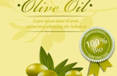 Vector Olive Oil Labels and Logos 01