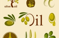 Vector Olive Oil Labels and Logos 02