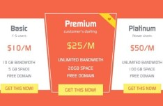 Pink and White Plans and Pricing Table PSD Template