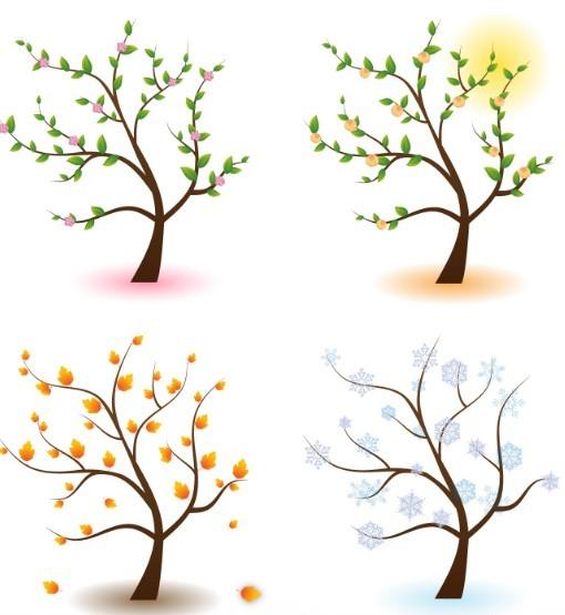 Clean Four Seasons Trees Vector 01