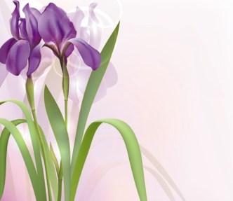 Fantastic Colorful Spring Flower Background 05
