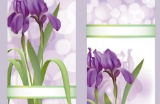 Fantastic Colorful Spring Flower Background 06