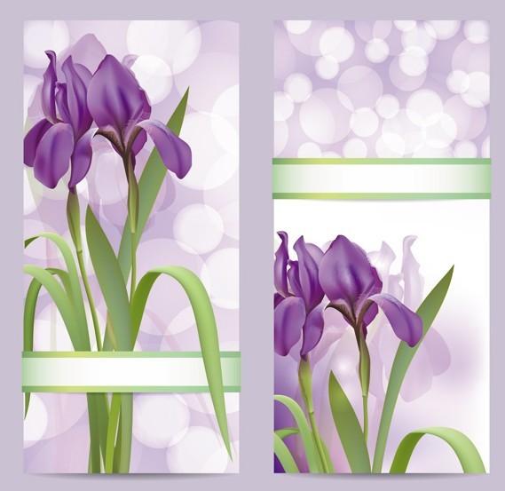 Fantastic Colorful Spring Flower Background 06