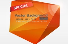Orange 3D Crystal-Like Vector Label