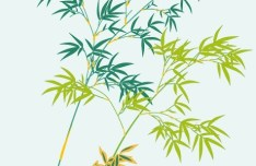 Simple Classical Bamboo Vector Illustration 05