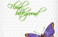 Vintage Spring Floral and Butterfly Background 01