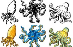 Vector Cartoon Octopus Illustration