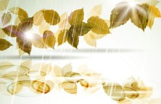 Vector Romantic Yellow Leaves In The Rain