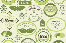 Vector Green ECO & Vegan Concept Stickers 02