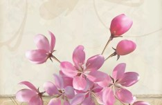 Vector Elegant Pink Flowers with Parchment Background 02