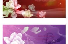 Set Of Fresh and Elegant Flower Banners Vector