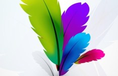 Vector Colorful Abstract Feathers Background 02