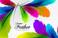 Vector Colorful Abstract Feathers Background 04