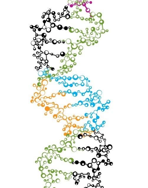 Vector DNA Strand