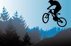 Vector Mountain Bike Illustration