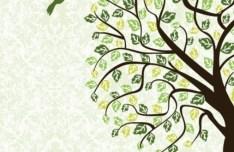 Hand Drawn Vector Green Tree and Bird Illustration 04