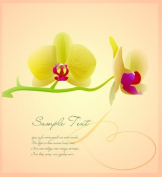 Vintage Orchid Card Background Vector 01