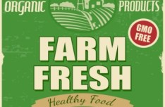 Vintage Farm Fresh Healthy Food Sticker Vector
