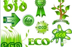 Green ECO & BIO Concept Icons Vector