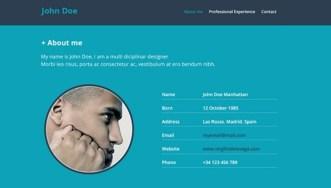 Resume Website PSD Mockup