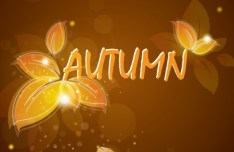 Autumn Yellow Leaves Background Vector 02
