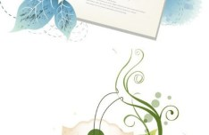 Set Of Vector Clean Card Backgrounds with Floral Decorations
