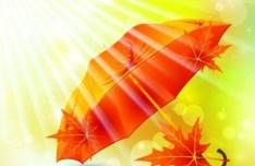 Warm Autumn Leaf Background Vector 01