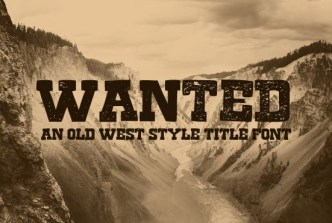 Free Font Wanted