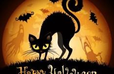 Cartoon Happy Halloween Card Background Vector