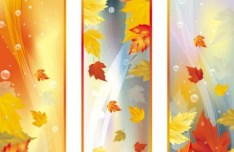 Set Of Vector Autumn Leaf Banners 02