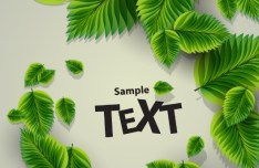 Green Leaves Background Illustration Vector 02