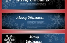 Set Of Vector Merry Christmas Cards with Bright Snowflake Backgrounds 02