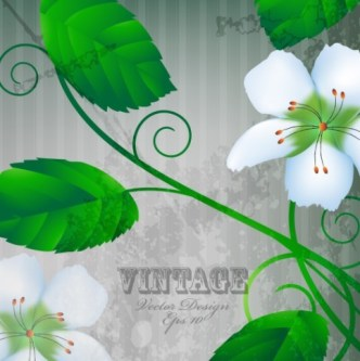 Vintage White Peach Blossoms with Green Leaves Illustration Vector
