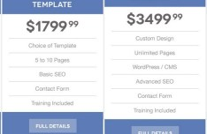 Flat Pricing Table For Web Design PSD