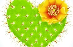 Vector Green Heart Shaped Cactus