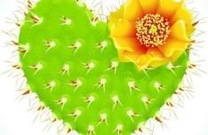 Vector Green Heart Shaped Cactus