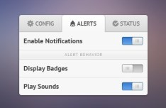 Settings Widget PSD