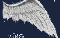 White Angle Wing PSD