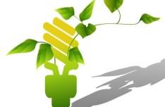 ECO Concept Creative Green Light Bulb Design Vector 06