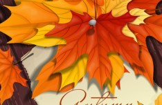 Hand Painted Autumn Maple Leaves Background Vector 05