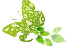 ECO Concept Green Butterfly Vector
