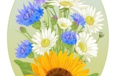 Oval Wild Chrysanthemum Flower Frame Vector
