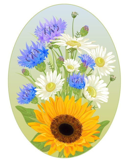 Oval Wild Chrysanthemum Flower Frame Vector