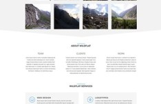 WildFlat - Creative Flat Web Template PSD
