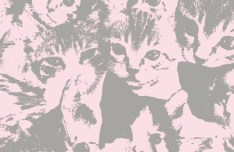 Cute Kitten Pattern Vector