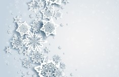 Elegant White Snowflakes Background Vector 03