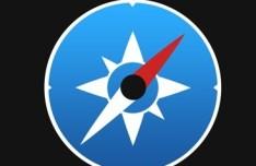 Round Safari & Compass Icon